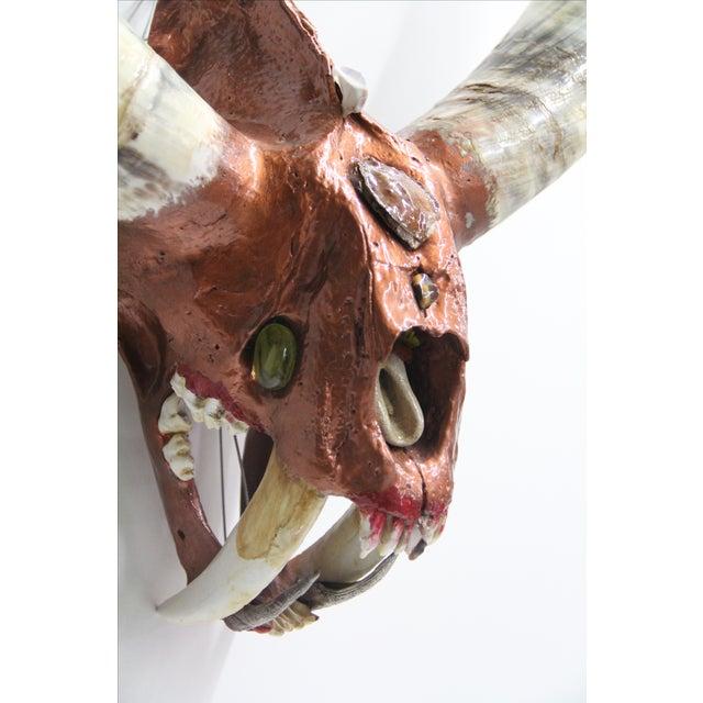 Sabretooth Oxen Longhorn Skull For Sale - Image 4 of 8