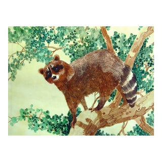 Curious Raccoon Watercolor Painting For Sale