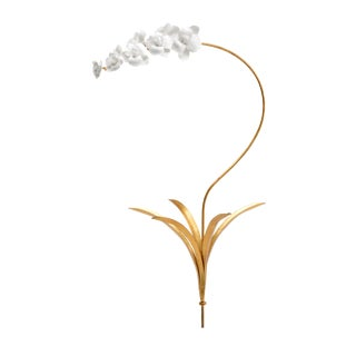 Large Orchid Stem For Sale