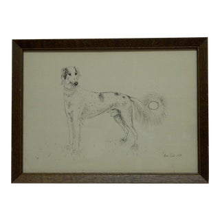 """Original Drawing """"Long Haired Greyhound Dog"""" by Alison Robb c.1974 For Sale"""
