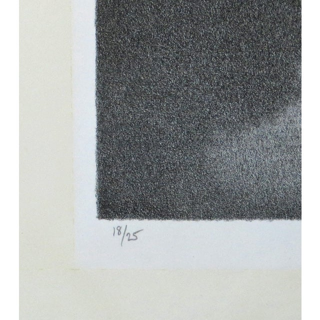 Metropolitan Robert Kipniss Lithograph For Sale - Image 4 of 8