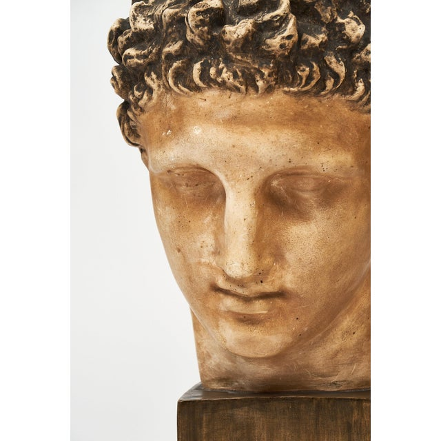 French Vintage Hermes Bust For Sale In Austin - Image 6 of 12