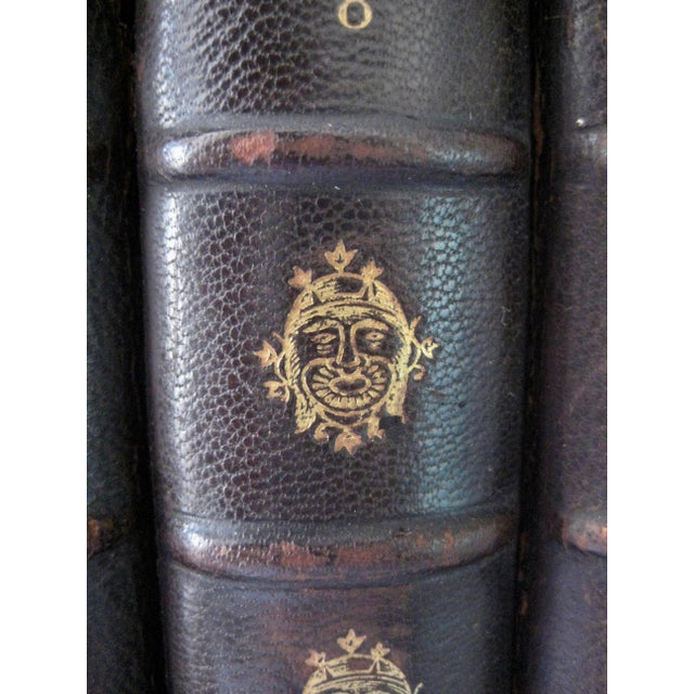 Brown Late 19th Century French Leather Books - Set of 10 For Sale - Image 8 of 12