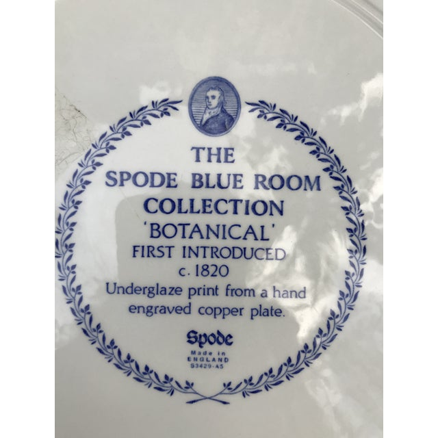Late 20th Century Large Spode Blue Room Collection Botanical Plate/Platter For Sale - Image 5 of 7