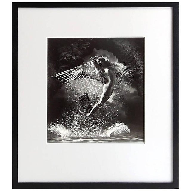 Black 2001 James Porto 'The Guardian' Framed Silver Gelatin Photograph For Sale - Image 8 of 8