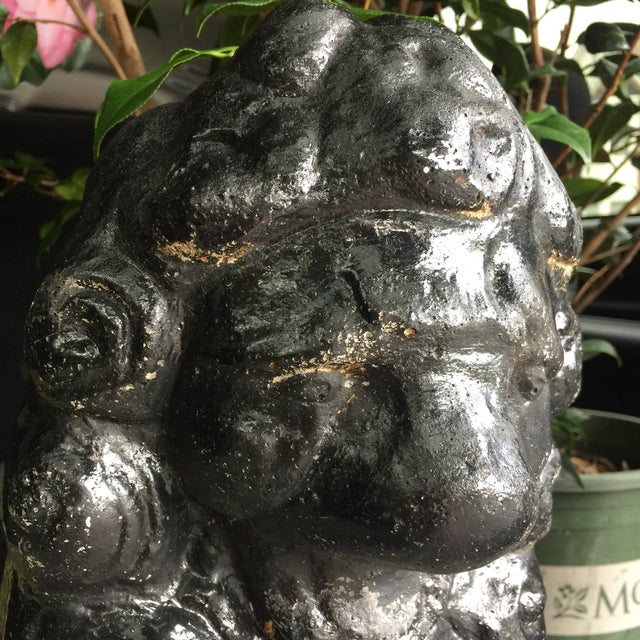 Antique Black Stone Lion Foo Dogs - A Pair For Sale - Image 5 of 5