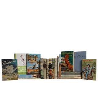 Midcentury Horse Stories for Children, S/20 For Sale