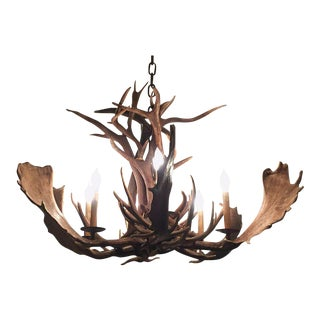 Deer and Moose Antler Chandelier