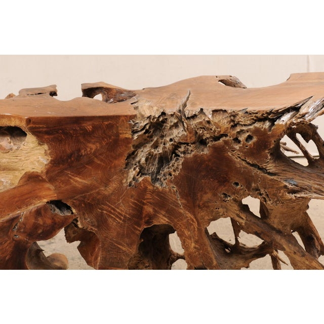 Early 21st Century Tropical Hardwood Teak Root Console Table For Sale - Image 5 of 12