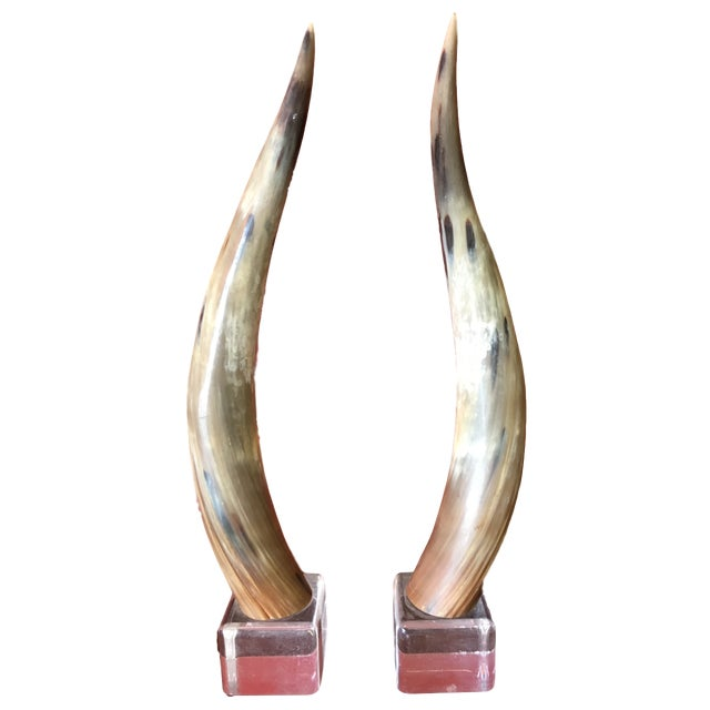 Bone Texas Longhorns Cattle Horns on Lucite Bases - A Pair For Sale - Image 7 of 7
