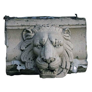 20th Century Figurative Salvaged Terra Cotta Lion Head For Sale