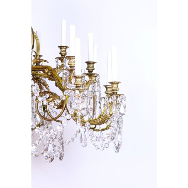 French Gilt Bronze and Crystal 36 Light Chandelier For Sale In Boston - Image 6 of 9