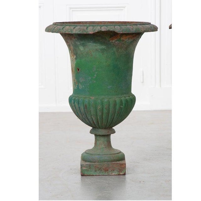 French 19th Century Painted Cast Iron Urns - a Pair For Sale In Baton Rouge - Image 6 of 8