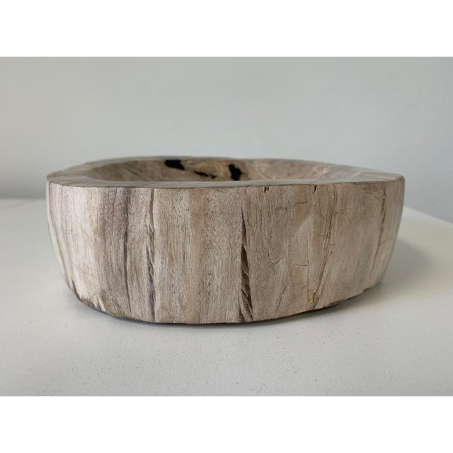 Petrified Wood Catchall Bowl For Sale - Image 4 of 10