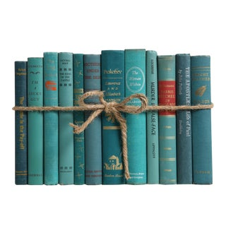 Midcentury Teal ColorPak : Decorative Books in Shades of Blue For Sale