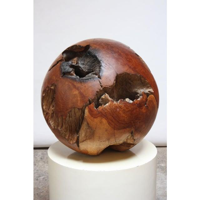 Midcentury Redwood Burl Sphere Sculpture For Sale - Image 4 of 13