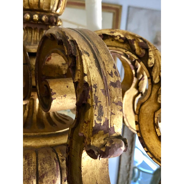 Mid 19th Century Italian Carved Gilt Wood Chandelier For Sale In West Palm - Image 6 of 13