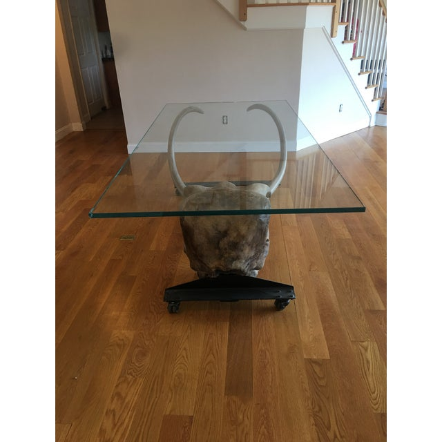Large Woolly Mammoth Head 8ft Glass Top Table For Sale - Image 10 of 13