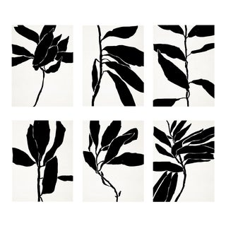 Contemporary Botanical Giclee Prints - Set of 6 For Sale