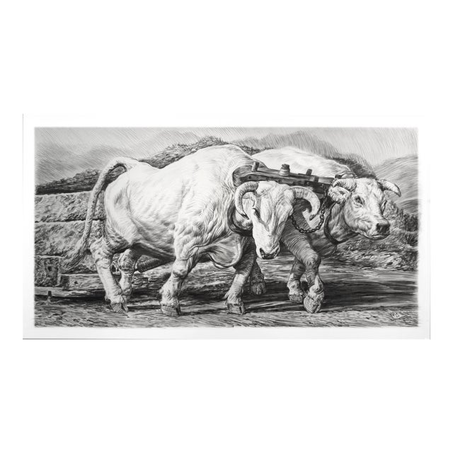 """Contemporary """"Oxen"""" Rick Shaefer Charcoal Print For Sale"""