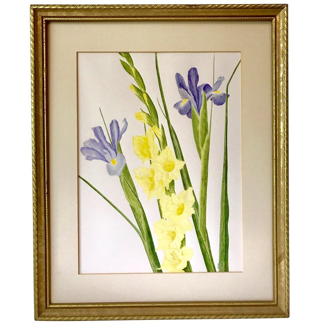 Vintage Watercolor Painting of Iris and Gladiolas by Delonga For Sale