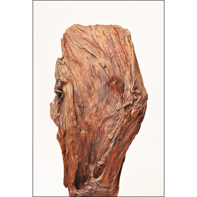 Vintage Driftwood Sculpture - Image 9 of 11