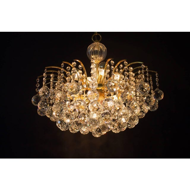Christoph Palme Chandelier Gilded Brass and Crystal Glass For Sale - Image 12 of 13