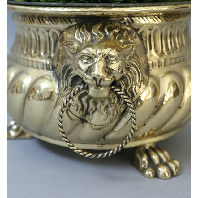 Early French Brass Jardiniere with Original Zinc Liner - Image 2 of 7