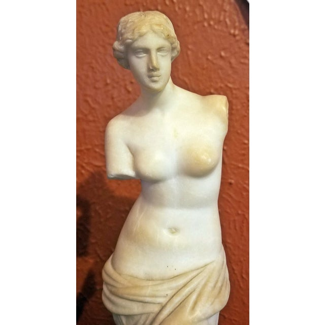 19c Italian Marble Figurine of Venus De Milo For Sale - Image 11 of 12