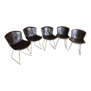 1980s Vintage Harry Bertoia for Knoll Chairs - Set of 5 For Sale