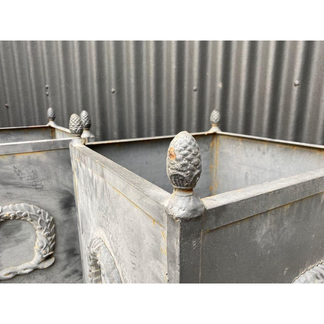 Steel Planters - a Pair For Sale - Image 4 of 11