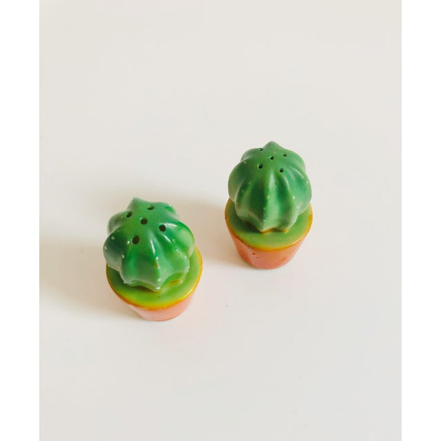 An adorable pair salt and pepper shakers in the form of two potted cacti. Each cactus is made out ceramic with a green...