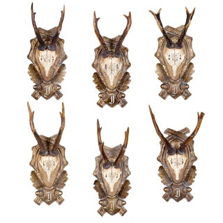 19th Century Roe Trophies - Set of 6