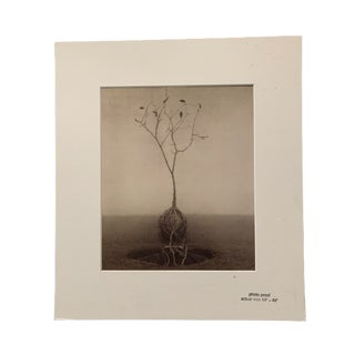 """Robert and Shana ParkeHarrison """"Architect's Brother: Harvesting Godot"""" Photo Proof For Sale"""