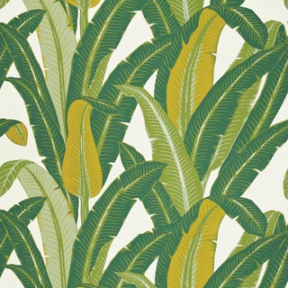 Sample - Schumacher Tropical Isle Wallpaper in Green on White For Sale