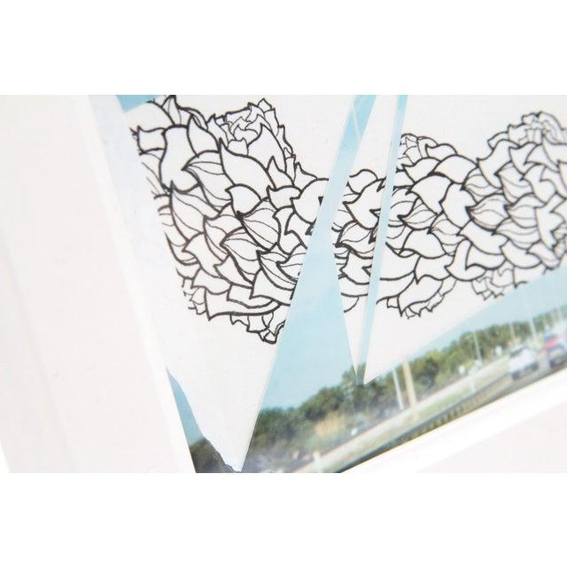 Framed Original Leaf Drawing & Photograph Collage - Image 3 of 5
