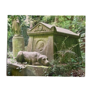 """""""Faithful Dog, Highgate, London"""" Contemporary Plein Air Architectural Photograph Print by Louise Weinberg For Sale"""