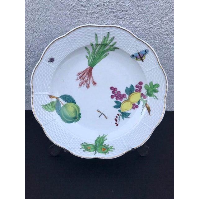 Three Antique European Naturalistic Porcelain Plates For Sale - Image 4 of 13