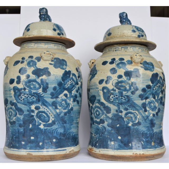 This attractive pair of large blue & white Chinese porcelain temple / ginger jars. These two large Baluster vases have a...