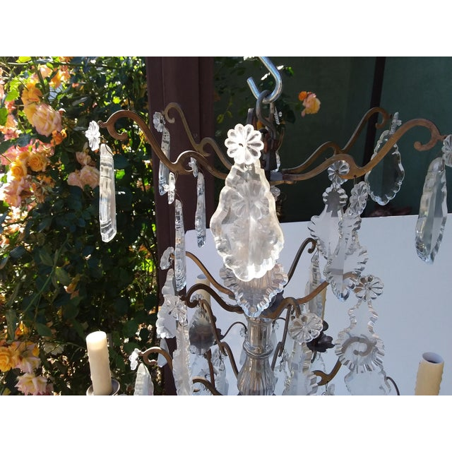 French Bronze and Crystal Cage Style Chandelier For Sale - Image 12 of 13