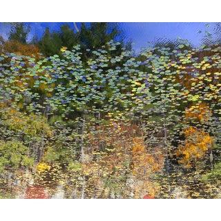 """""""Reflection 33"""" Landscape Photograph For Sale"""