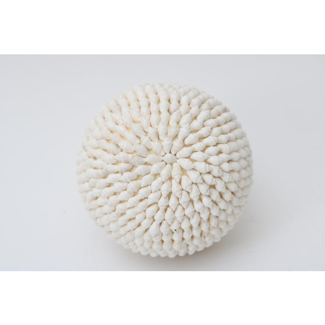 Shell Encrusted Sphere For Sale - Image 4 of 4