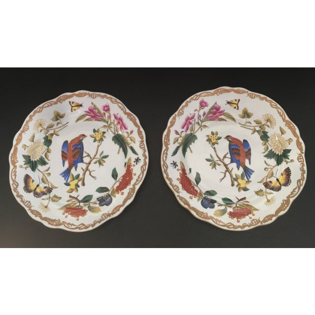 Chelsea House Original Hand-Painted Gold Rimmed Plates - a Pair For Sale - Image 6 of 6