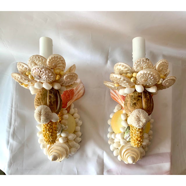 White Single-Light Seashell Sconces - a Pair For Sale - Image 8 of 8