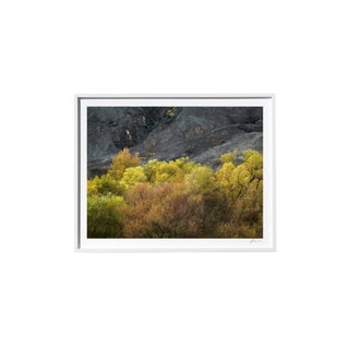 "Timothy Hogan ""Yes and No"" Original Framed Color Landscape Photograph, 2017 For Sale"