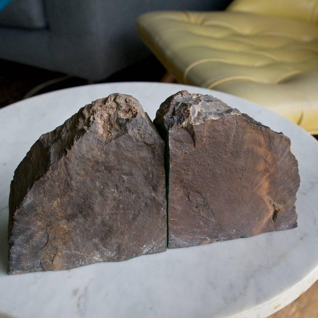 1960s Rare Bookmatched Black Petrified Wood Polished Monolithic Bookends For Sale - Image 5 of 8