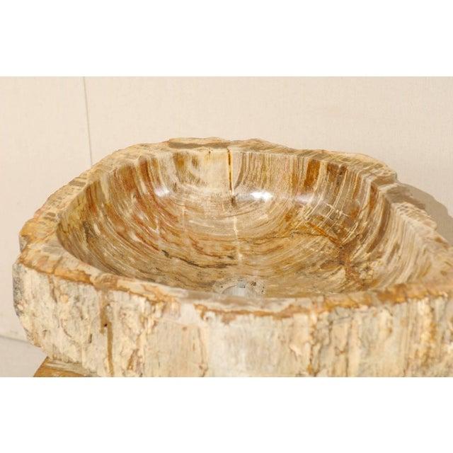Wood Vintage Mid Century Petrified Wood Sink For Sale - Image 7 of 9