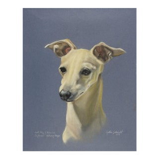 Pastel Whippet Dog Portrait