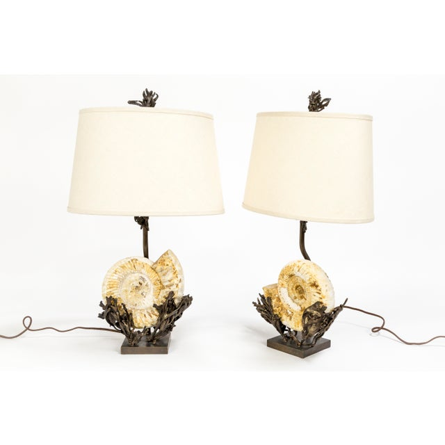 Fossilized Nautilus & Bronze Laurasia Table Lamp by Tuell + Reynolds (2 Available) For Sale - Image 13 of 13