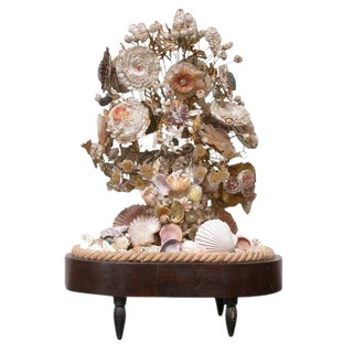 Victorian Decorative Shell Display For Sale